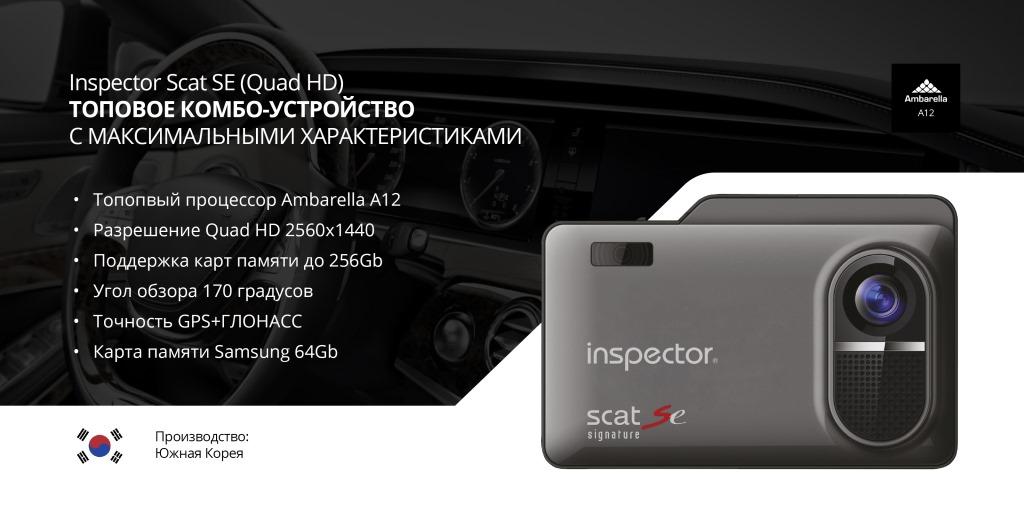 Scat_1.jpg
